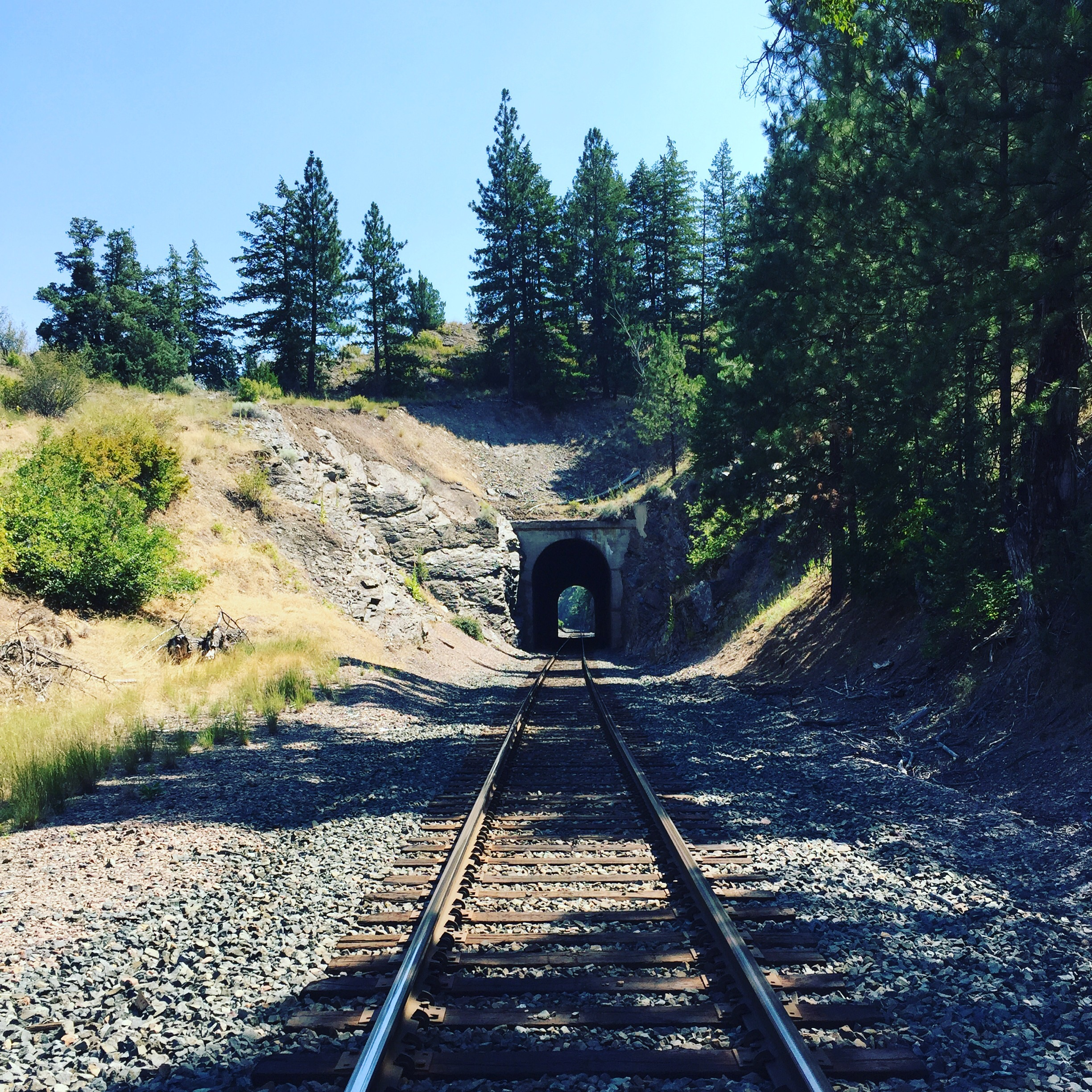 If you listen long enough, you can hear the tales of Cotton in the wind here on the rails above the Clark fork River in Montana.