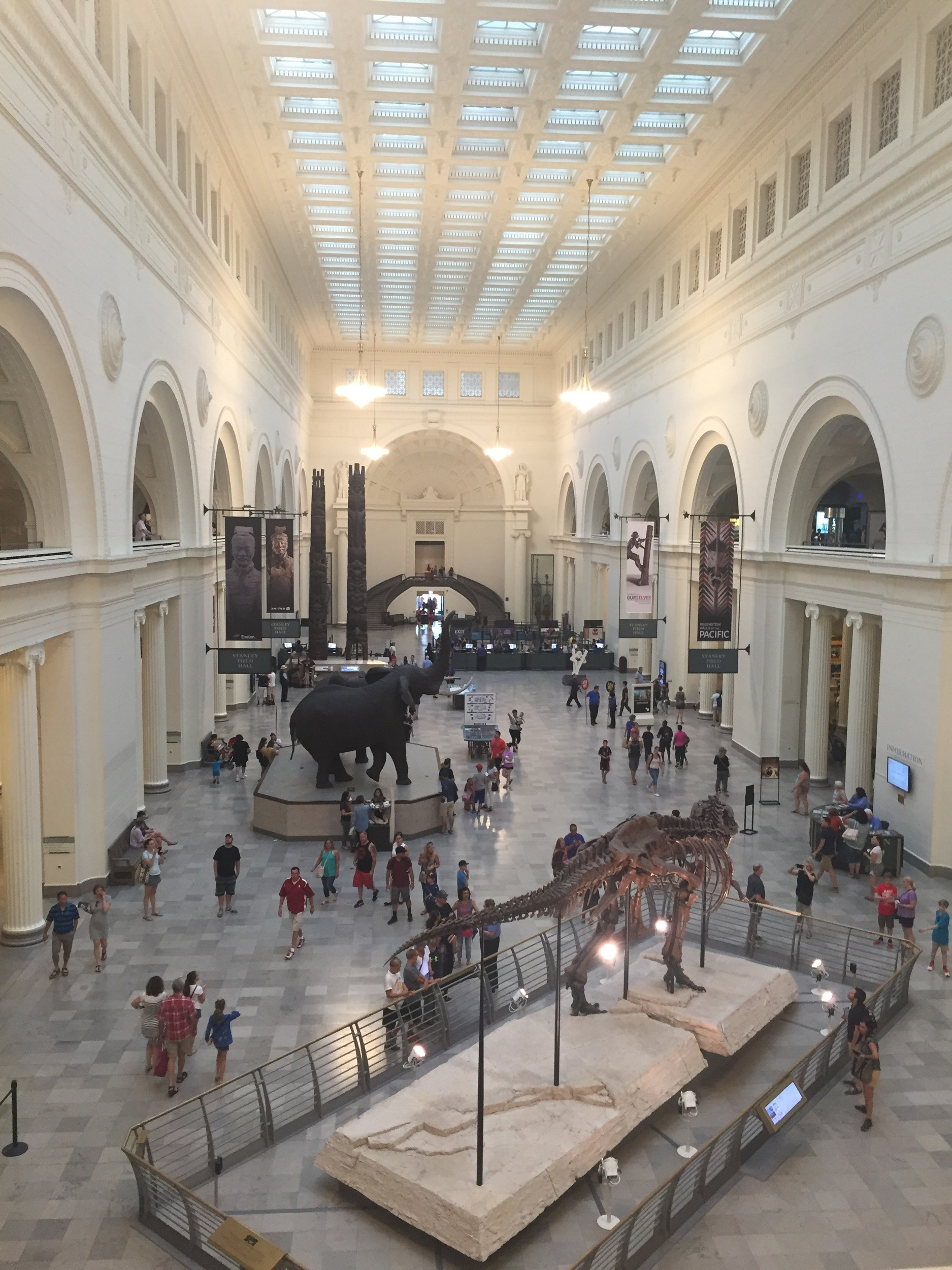 After a visit to Chicago's Field Museum, 7-29-16