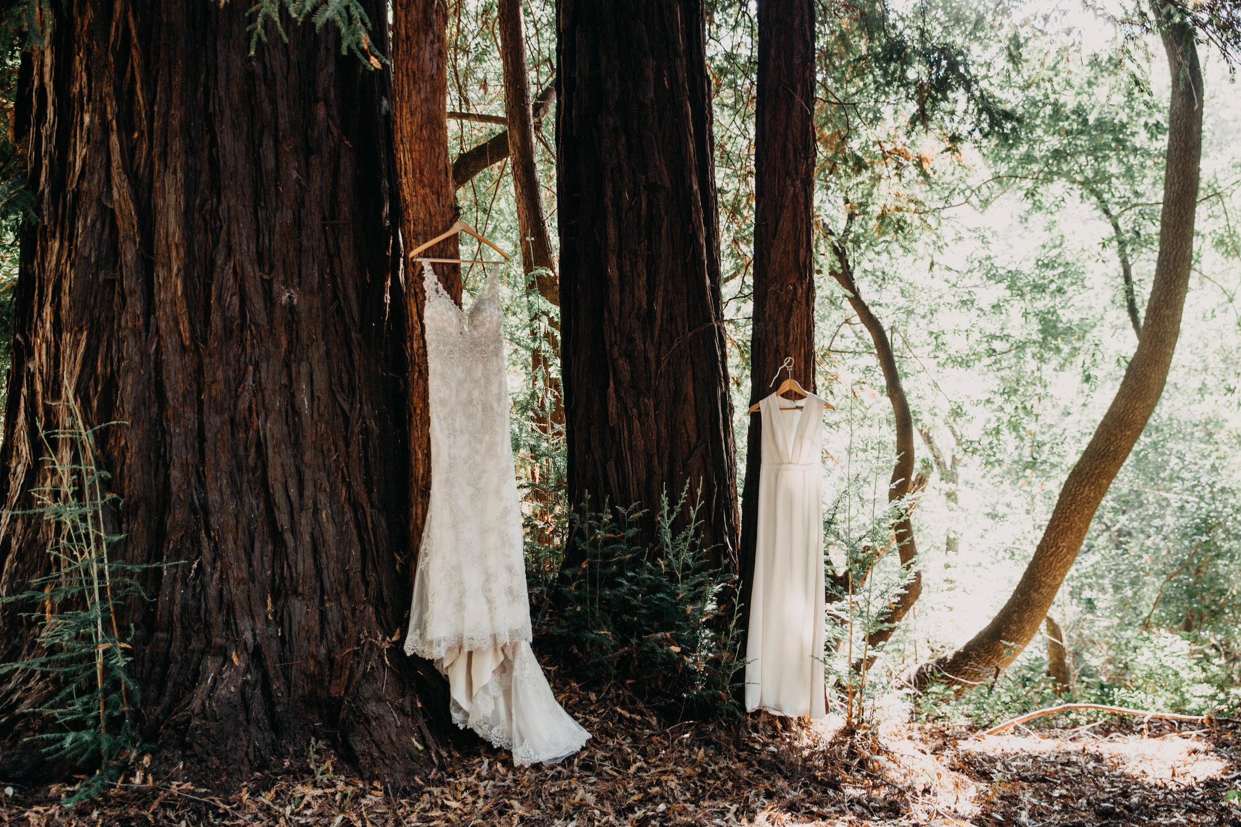 Meaghan + Jen -- An Intimate Big Sur Elopement -- Whitney Justesen Photography-16.jpg