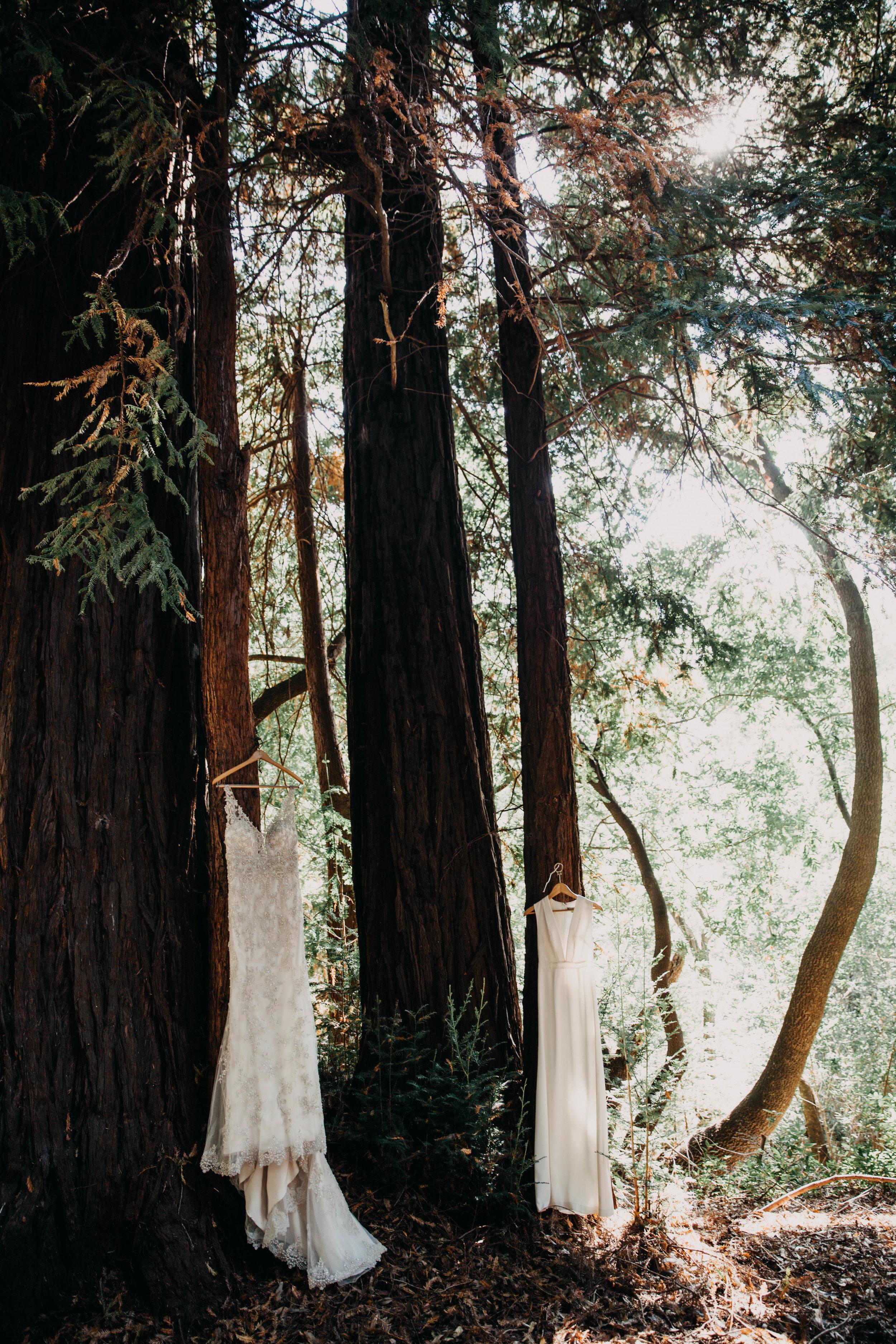 Meaghan + Jen -- An Intimate Big Sur Elopement -- Whitney Justesen Photography-17.jpg