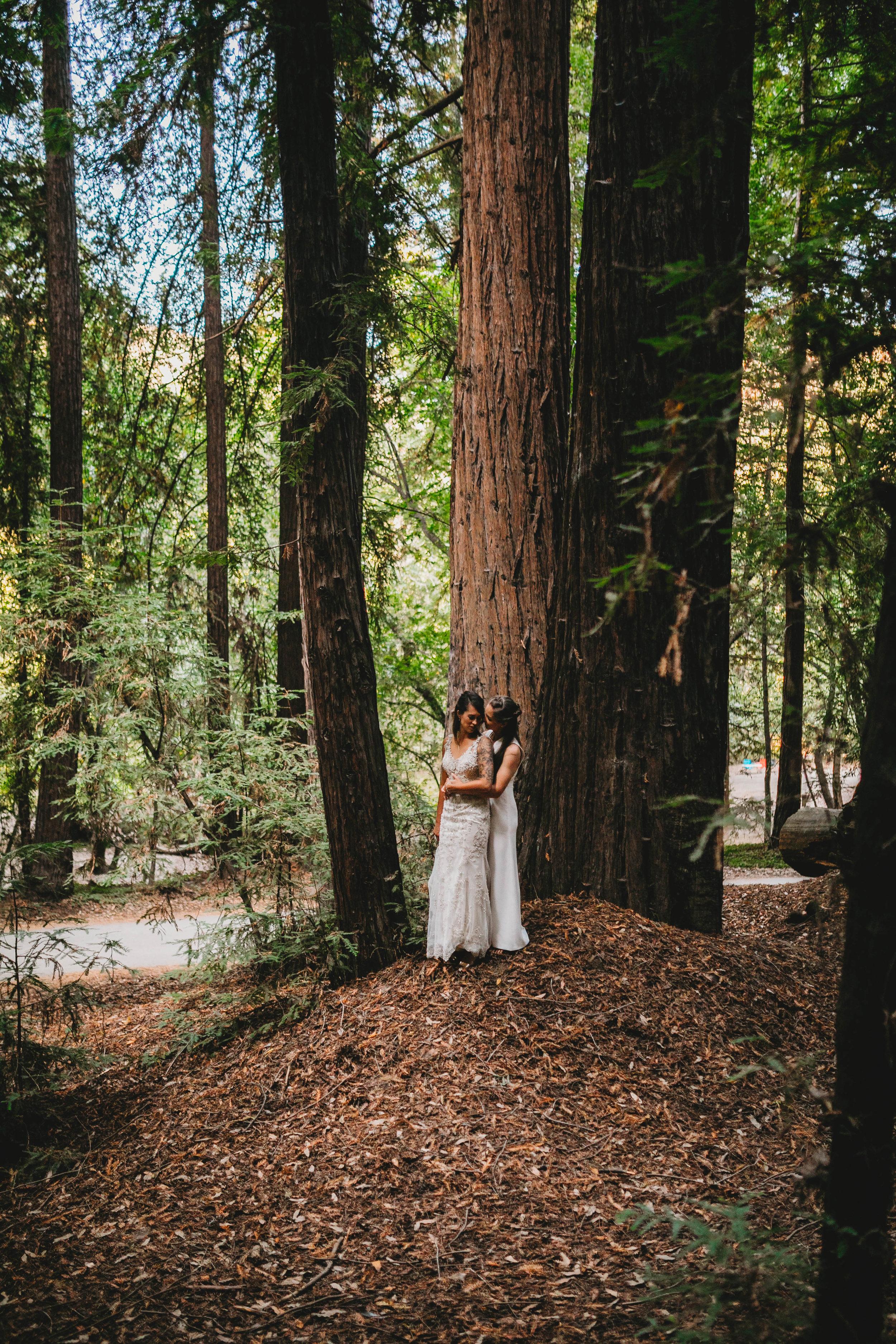 Meaghan + Jen -- An Intimate Big Sur Elopement -- Whitney Justesen Photography-82.jpg