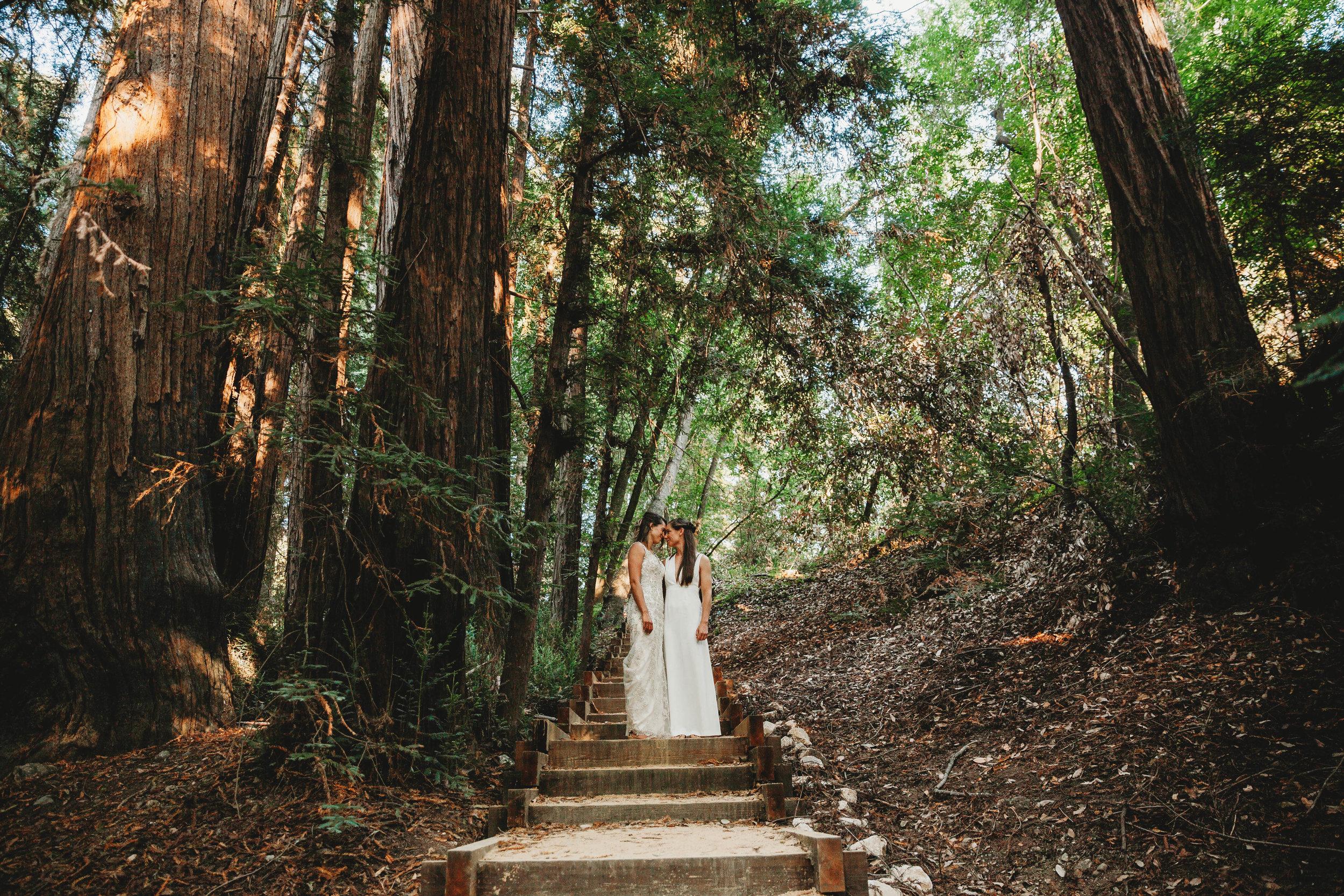 Meaghan + Jen -- An Intimate Big Sur Elopement -- Whitney Justesen Photography-131.jpg