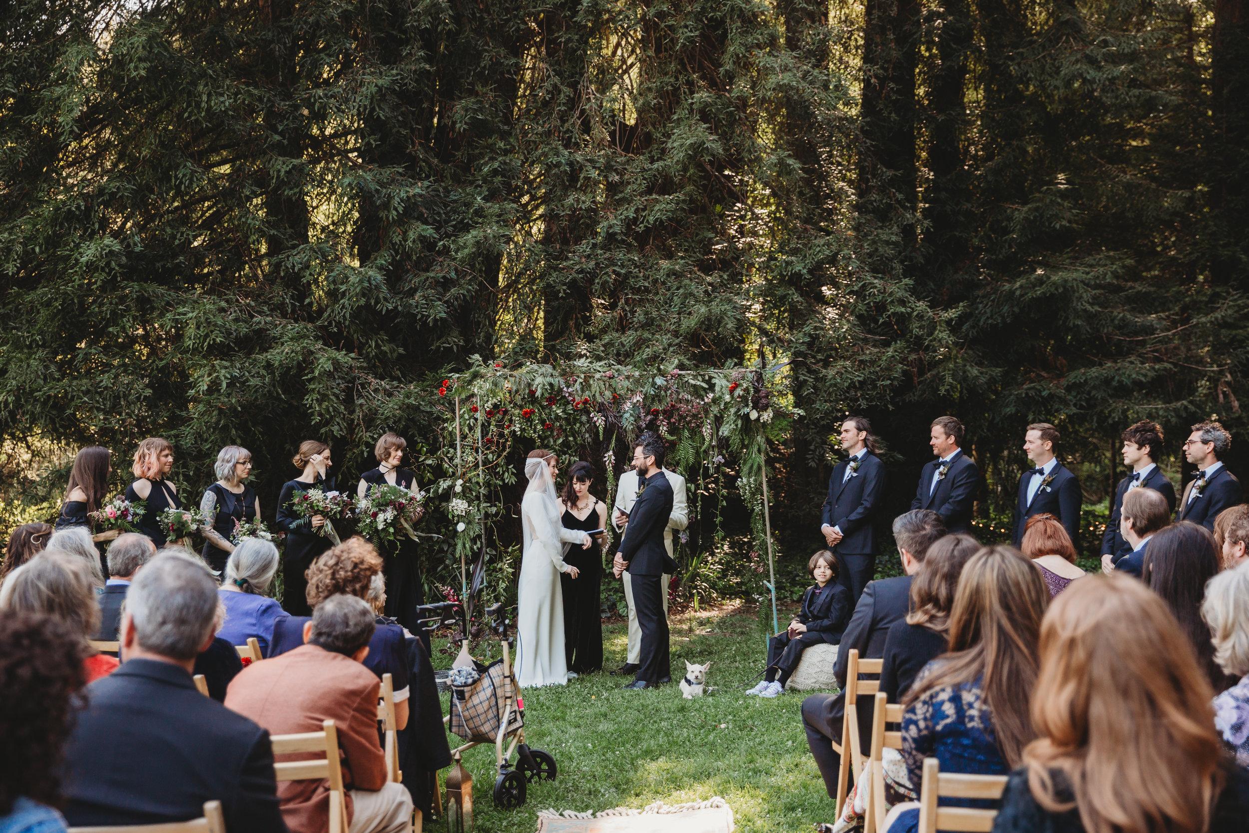 Ben + Alisa -- Dawn Ranch Wedding -- Whitney Justesen Photography-512.jpg