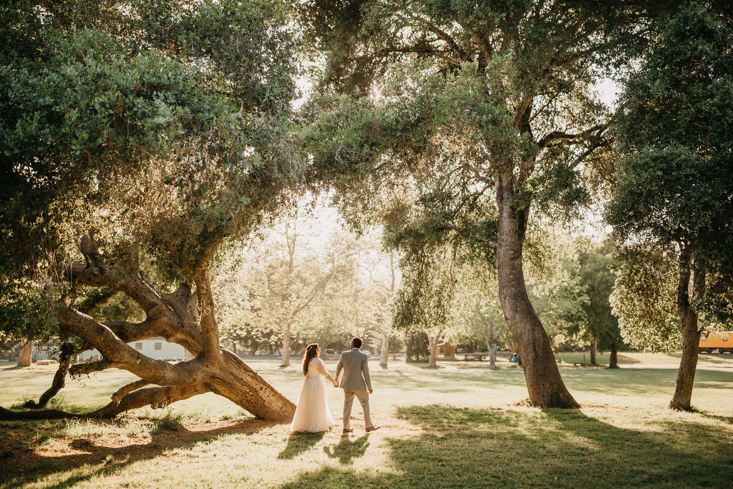 Kelly + Aaron -- A Roaring Camp Forest Wedding -- Whitney Justesen Photography-561.jpg