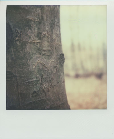 I + S = love (Polaroid SX-70 and Impossible Project colour film)