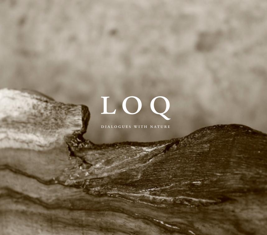 Lookbook 1