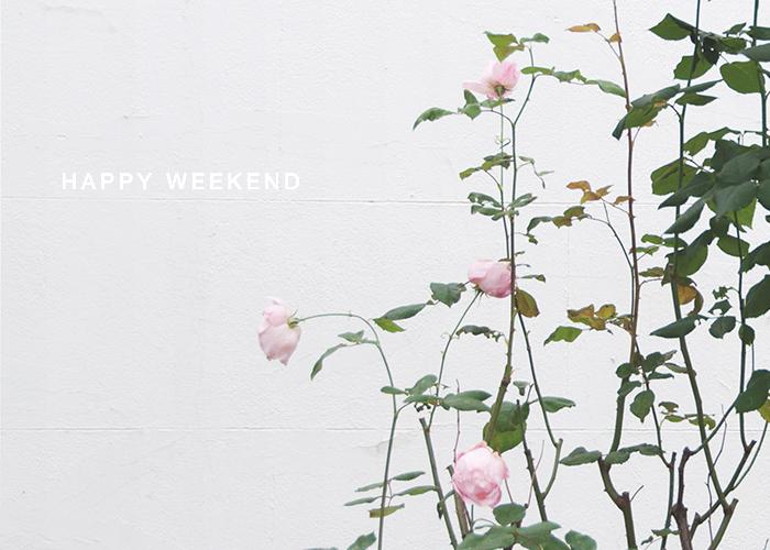 Happy Weekend 14 November London, UK / Renae Smith