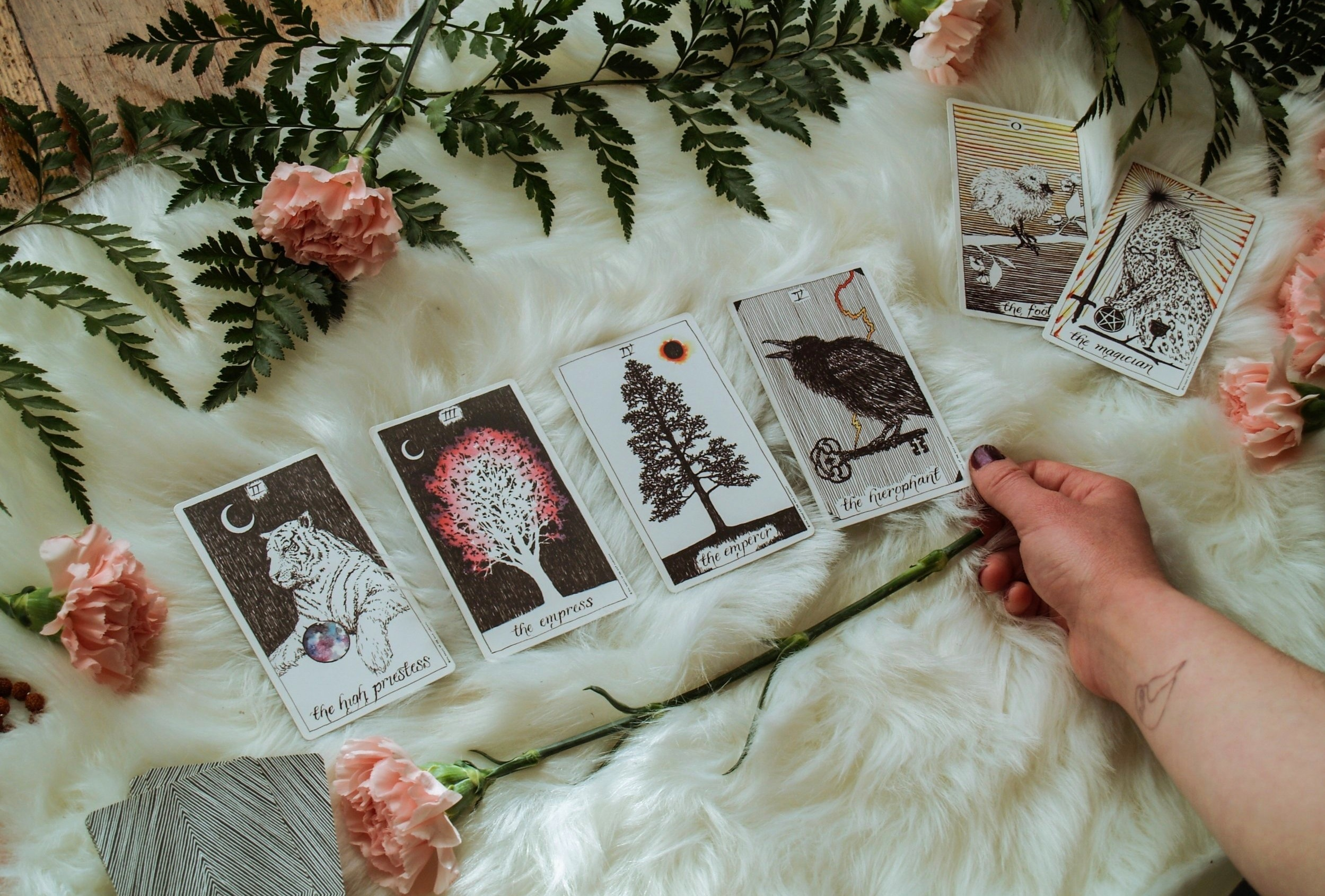 Tarot Readings and Strategy for Entrepreneurs