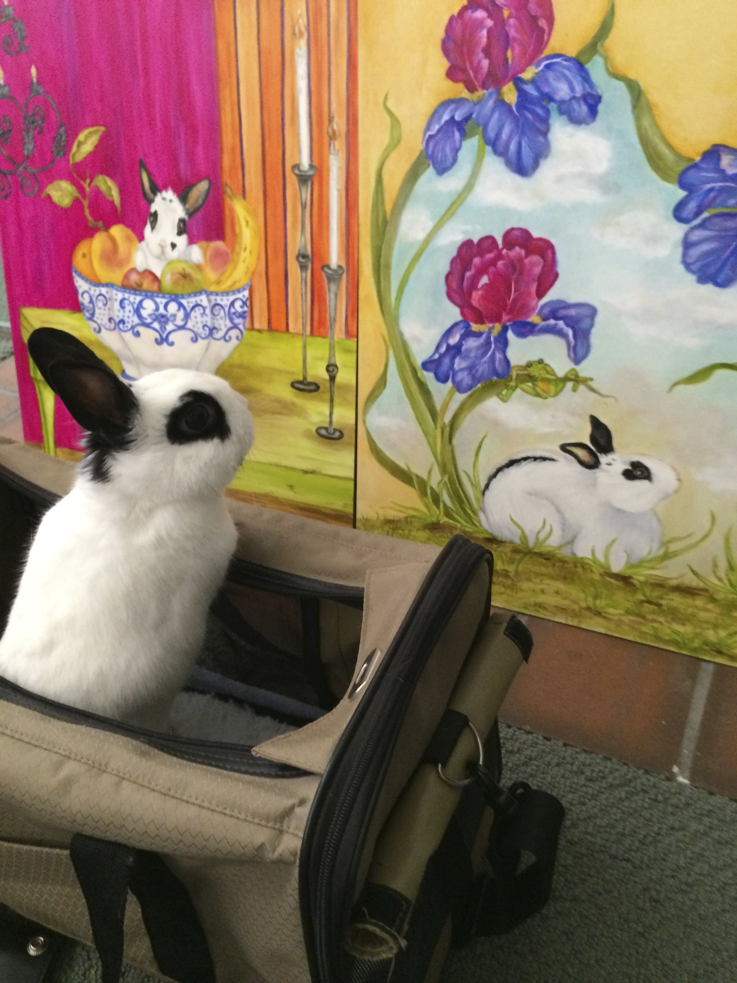 Valentino checks out the artwork for Book 1.