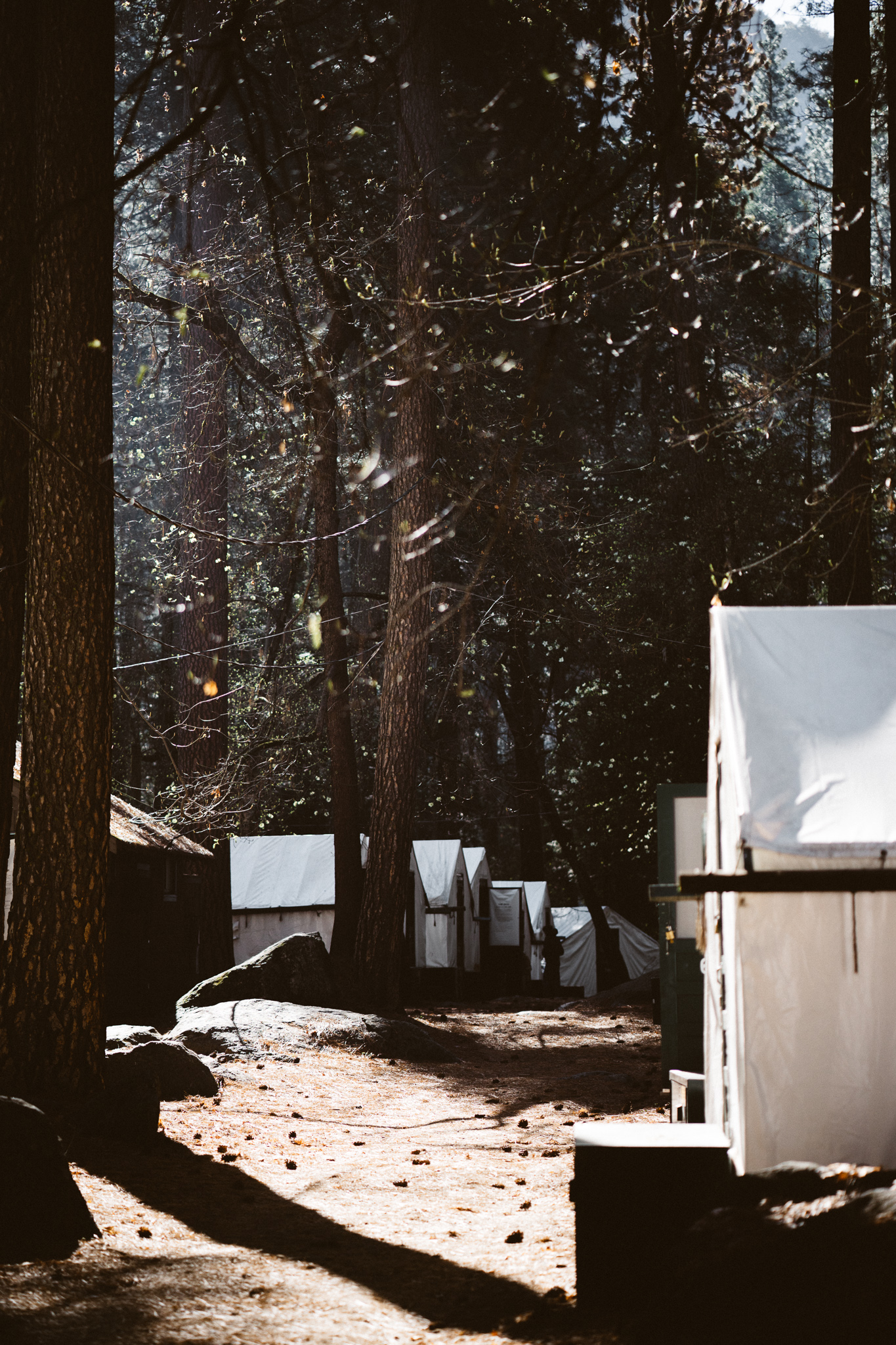 20160417_Yosemite_0704.jpg