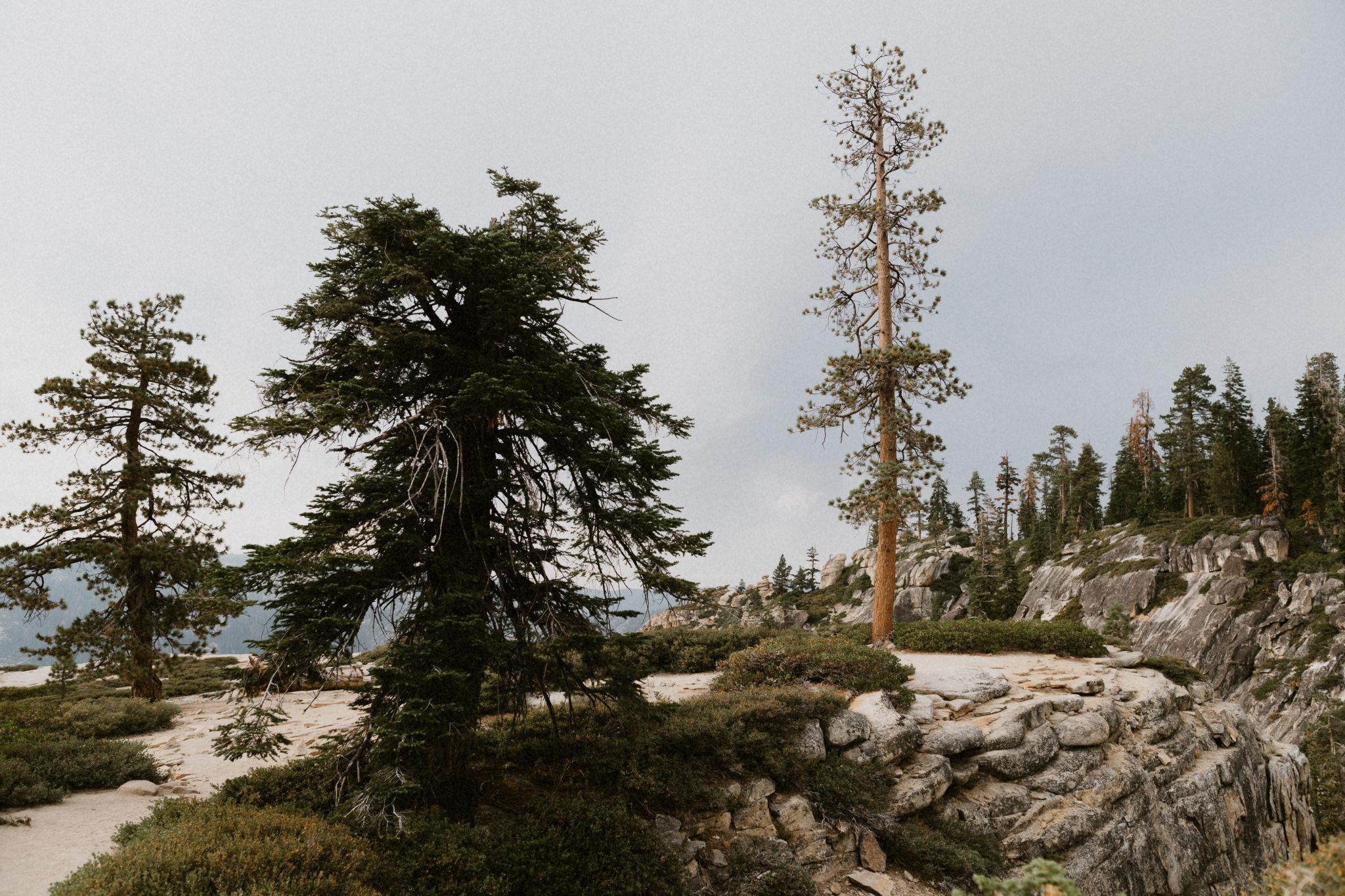 20160820_Yosemite_0001-Exposure.jpg
