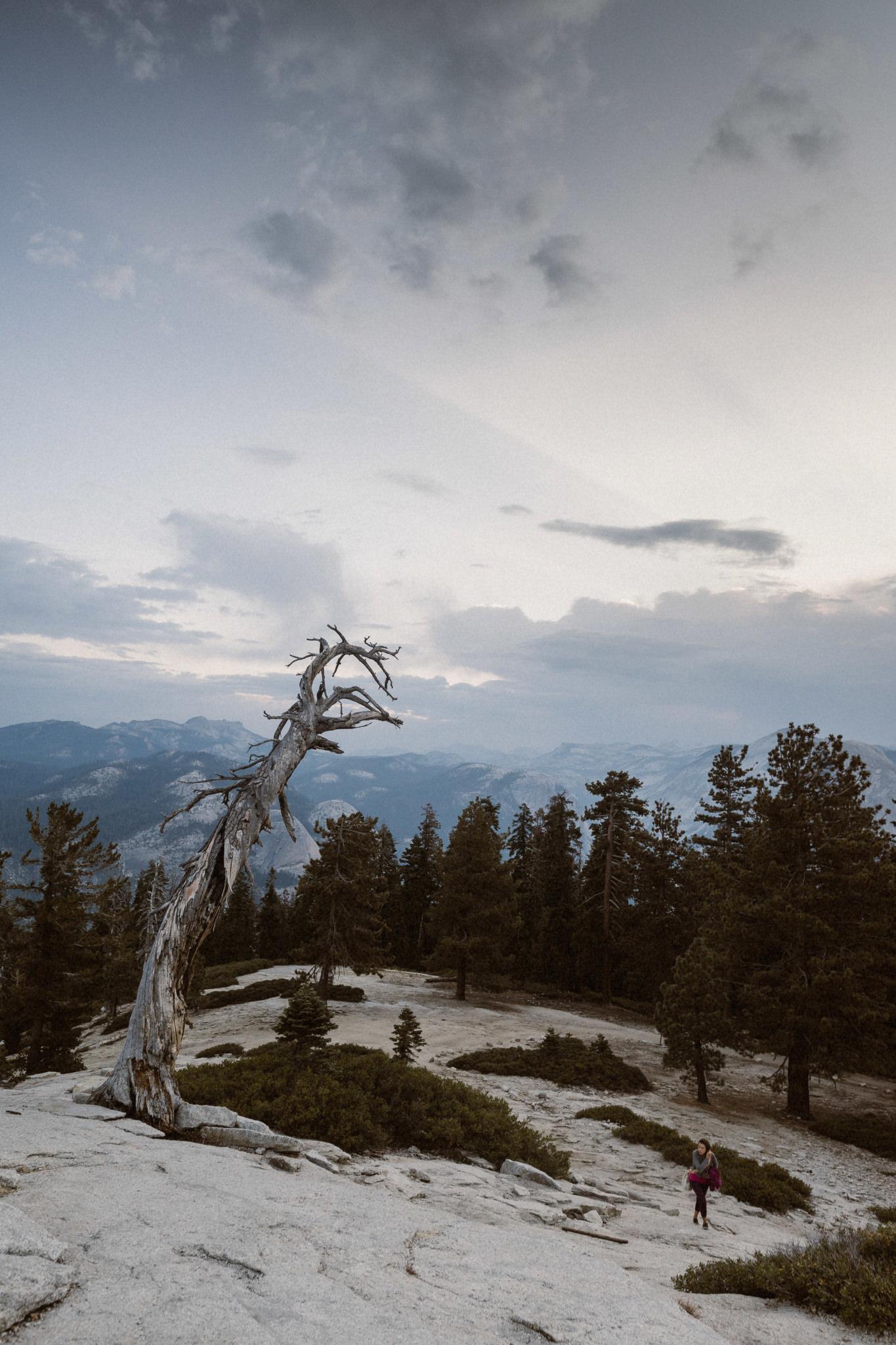 20160822_Yosemite_0324-Exposure.jpg