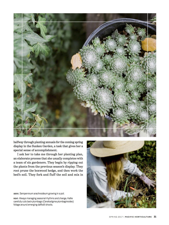 Filoli Working Gardener4.jpg