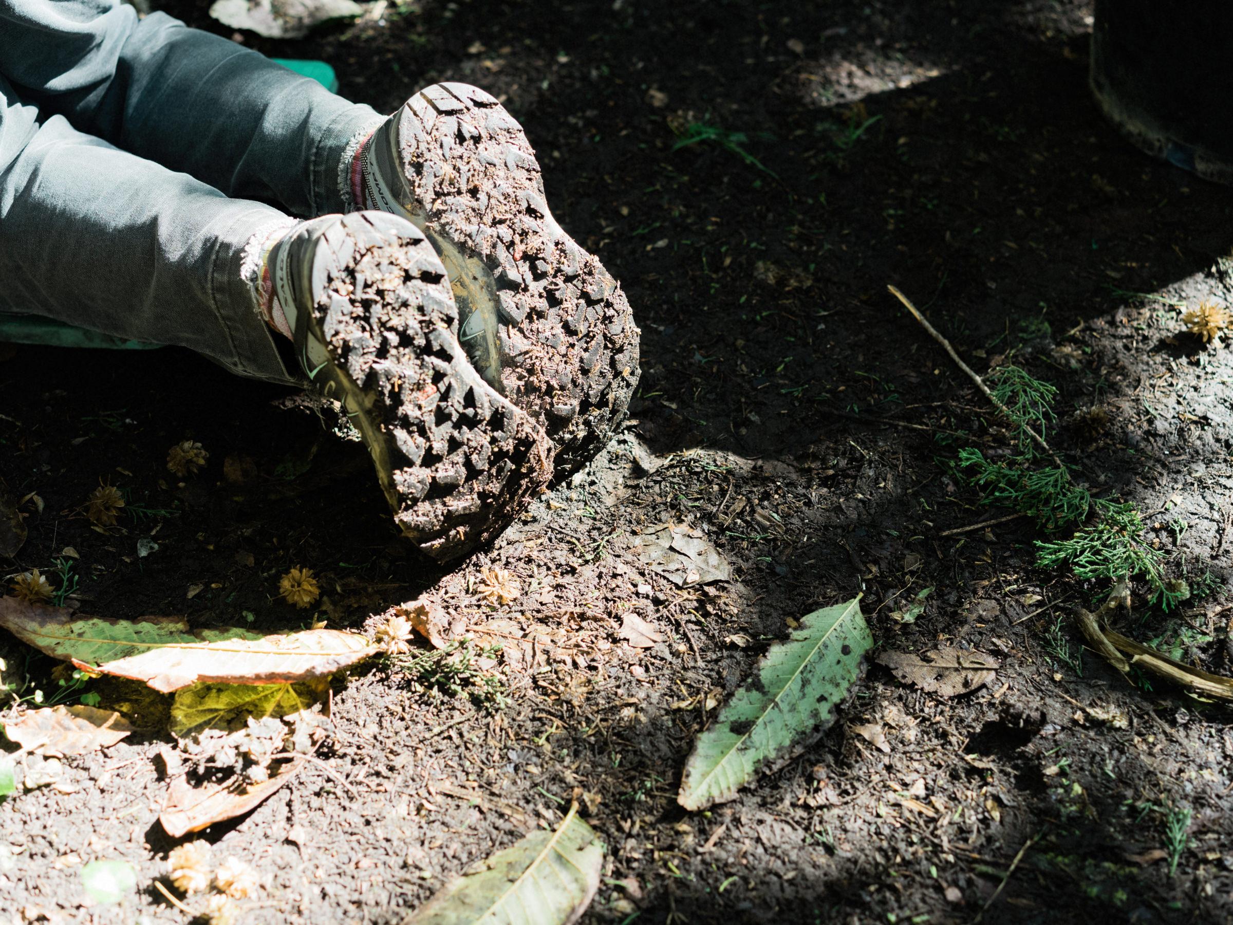 20170112-San-Francisco-Botanical-Garden-03.jpg