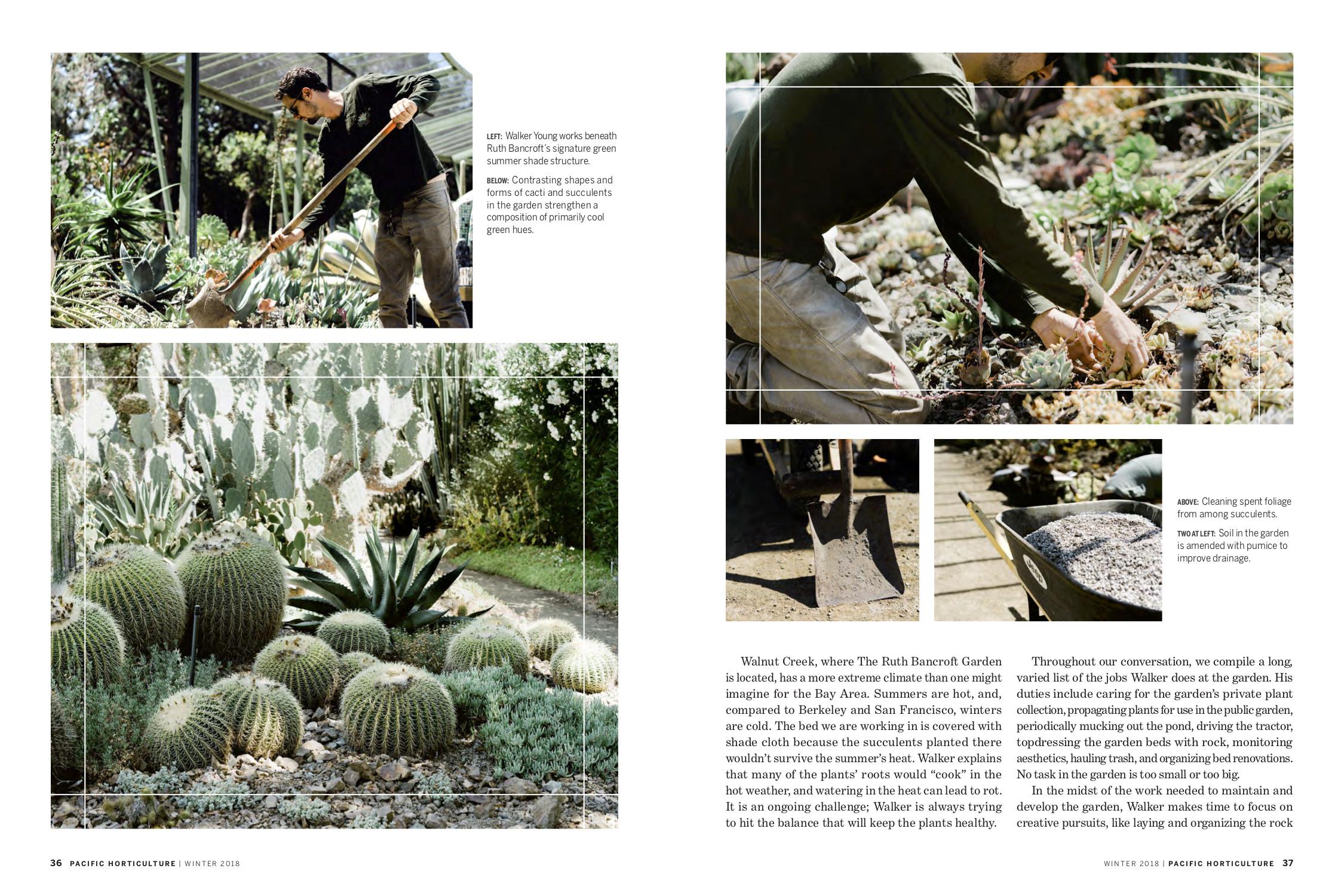 Working Gardener RGB - page 2.jpg