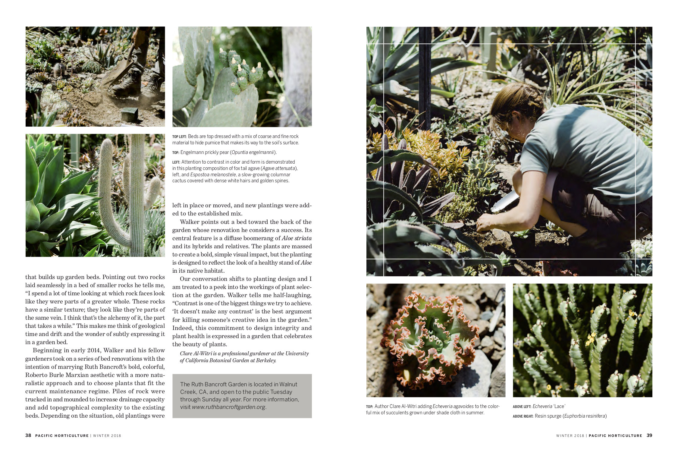 Working Gardener RGB - page 3.jpg