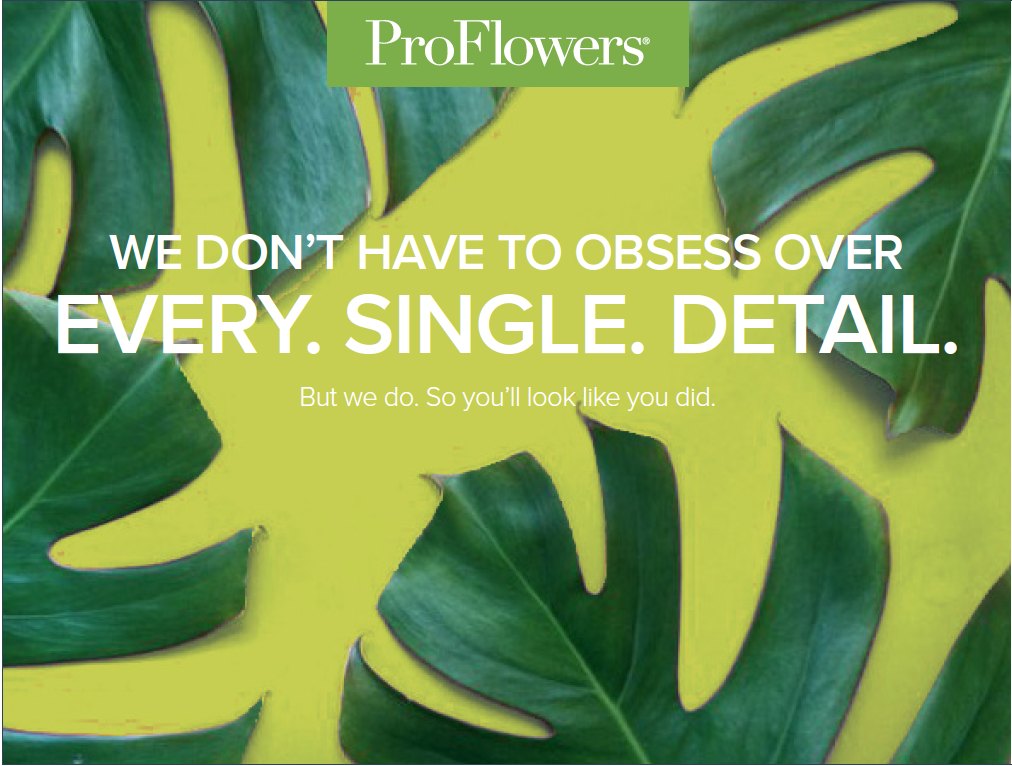 Click the image above to view a proposed brand concept & strategy deck for ProFlowers. (It will open in a new tab.)