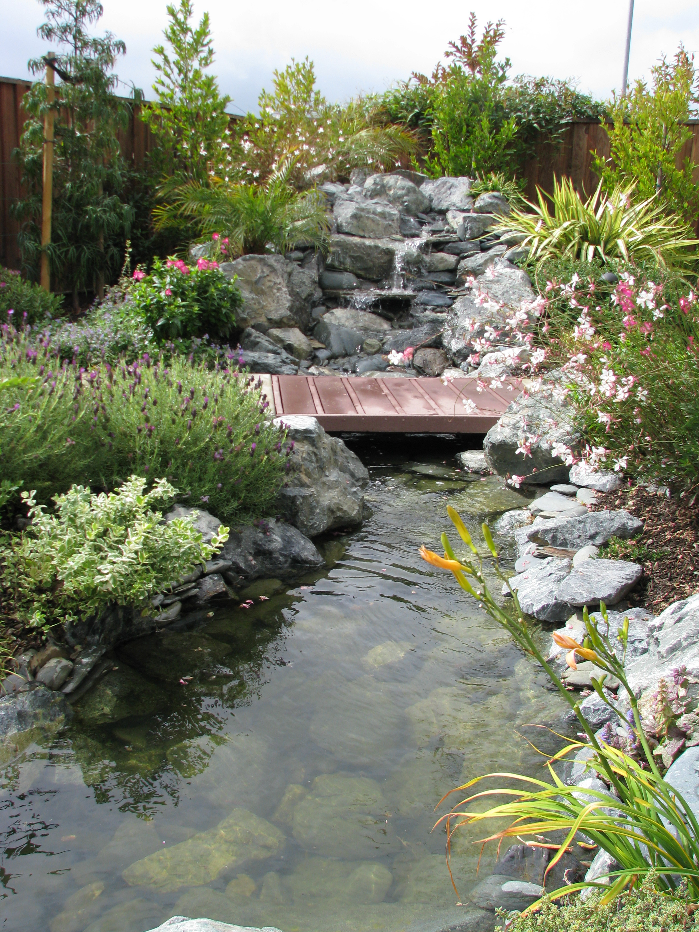 A Soothing Water Feature