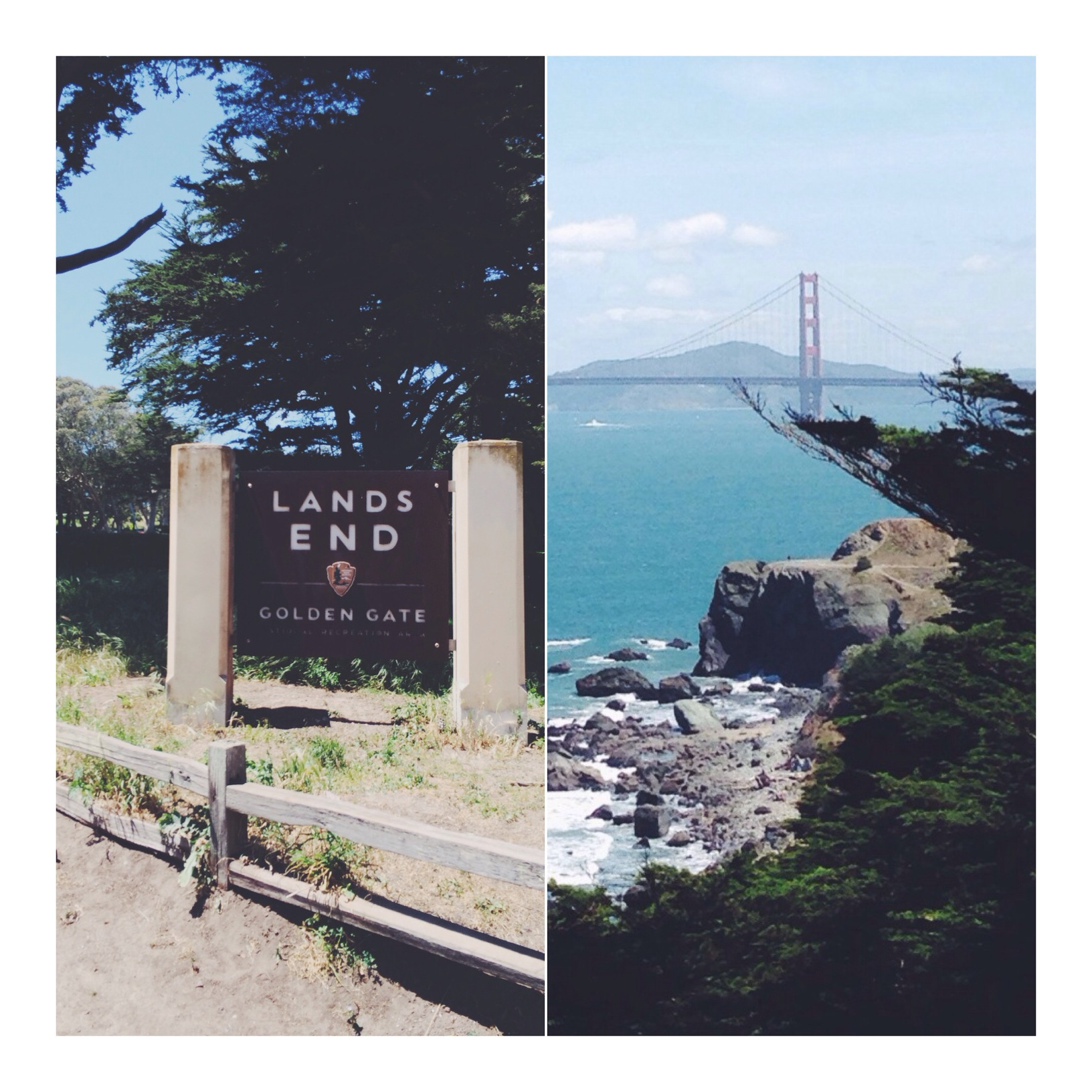 Need to stretch those legs? Check out the  Land's End Trail  for panoramic views of the bay and the Golden Gate Bridge. It's an easy hike with the exception of the never ending flight of woodland stairs, but don't worry that's only at the end.