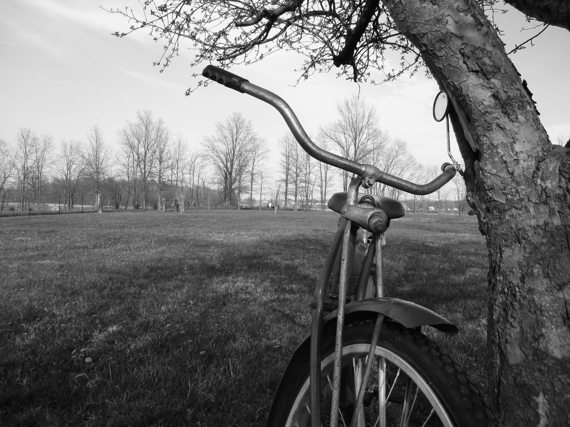 Classic Bicycle on a sunny day