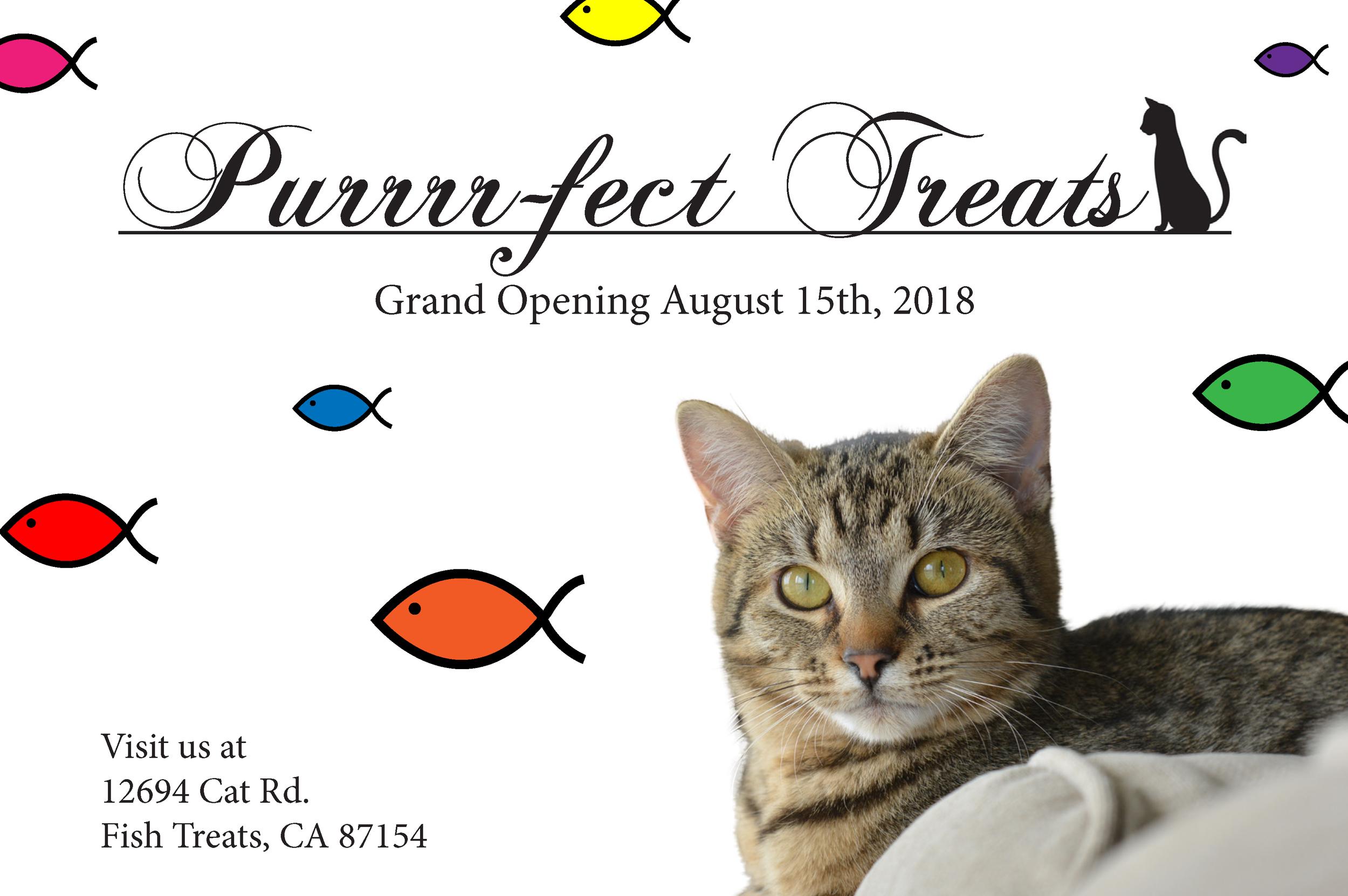 Cat Treats Opening Store