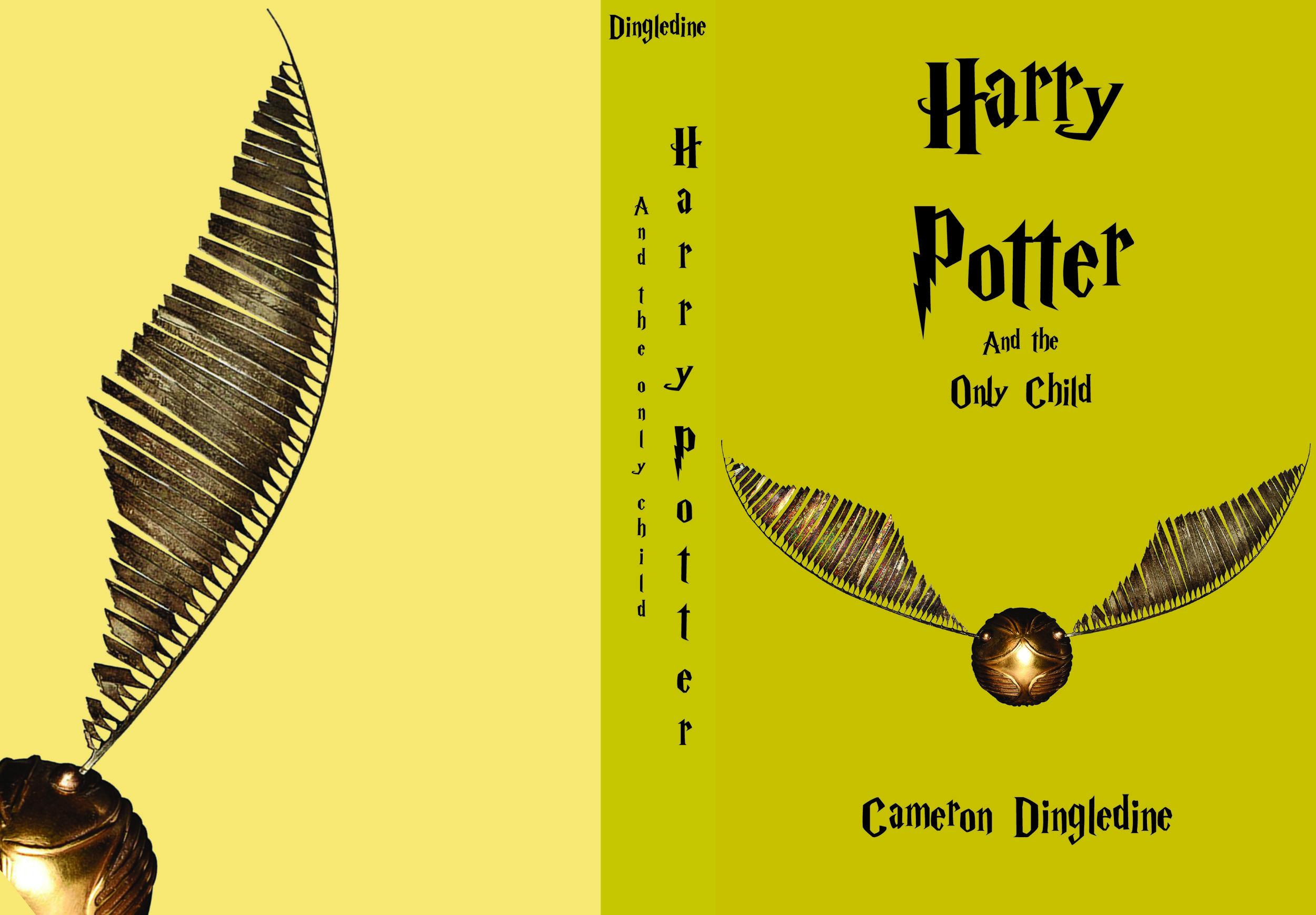 dingledine-book cover.jpg