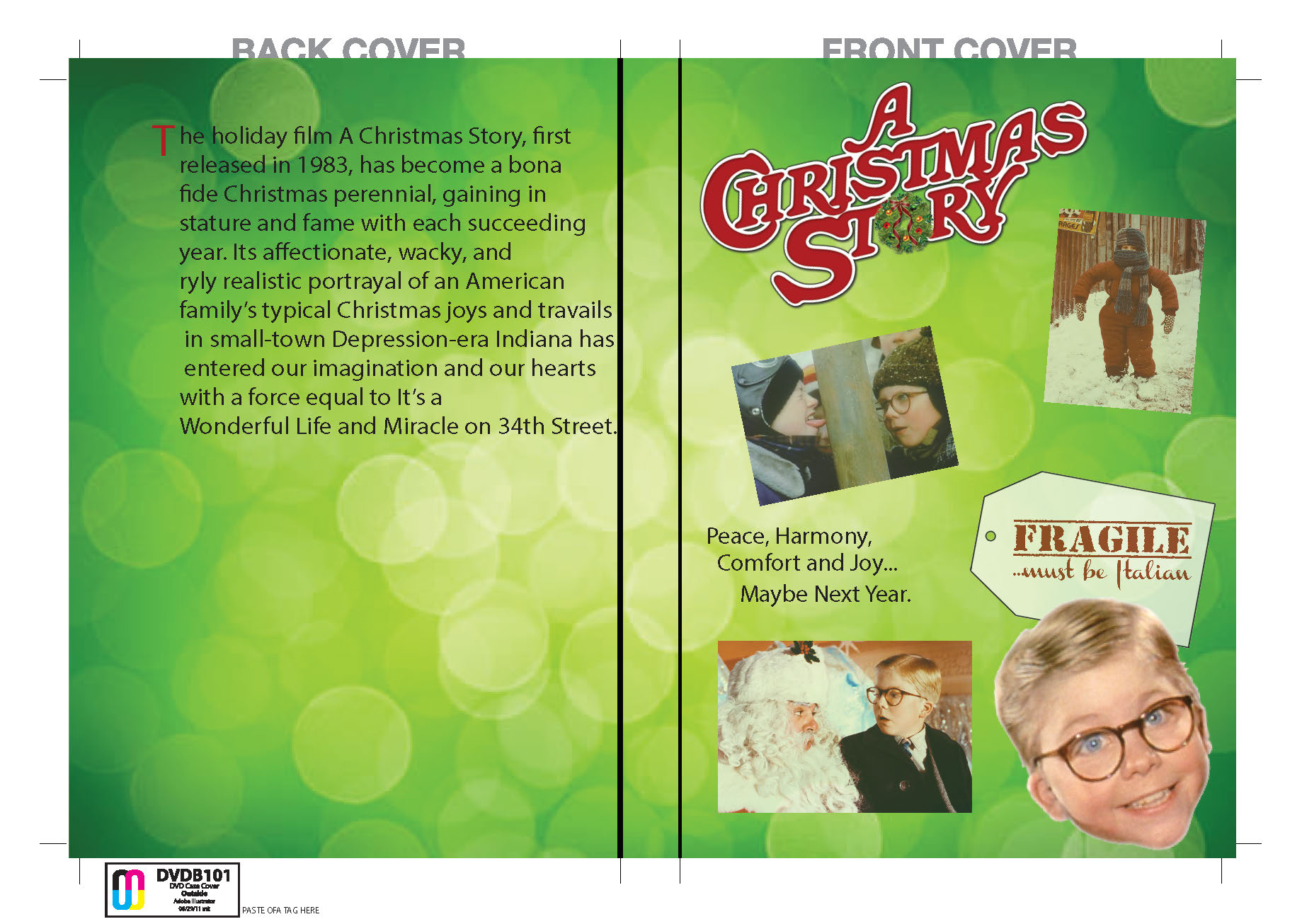 dvd cover 1day