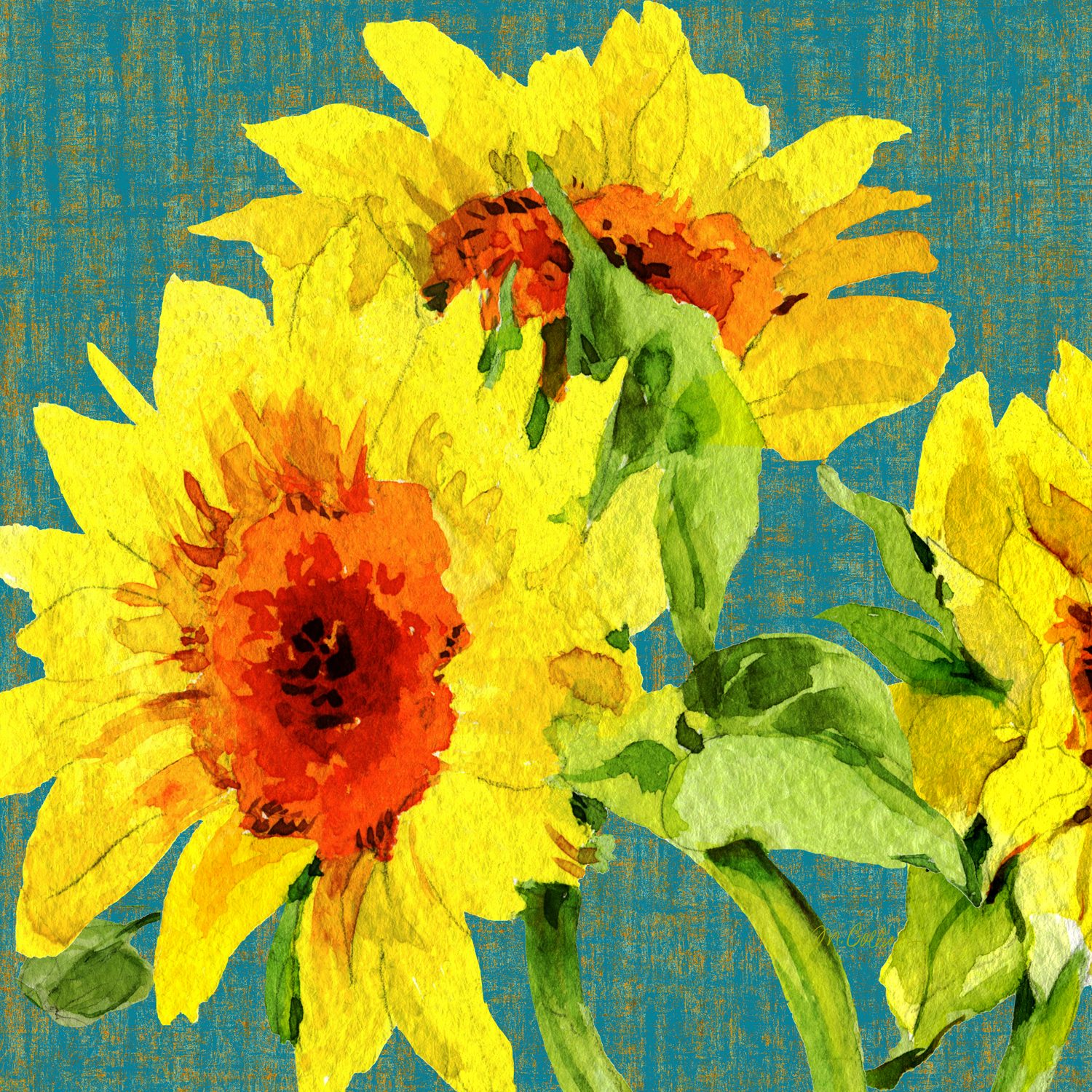Provence-Sunflowers-.jpg