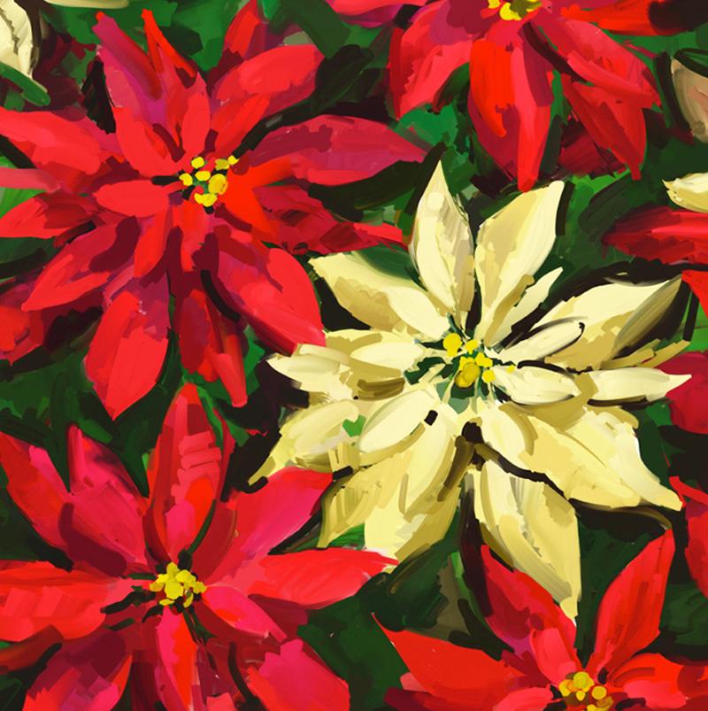 Christmas-Brilliance.jpg