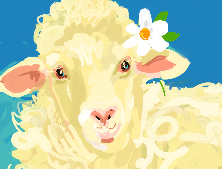 Curly-the-Sheep.jpg