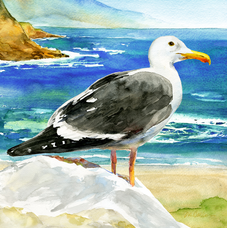 Pacifica-Seagull.jpg