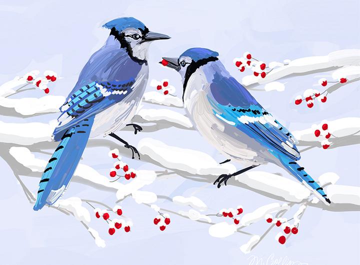 Winter Jays & Berries.jpg