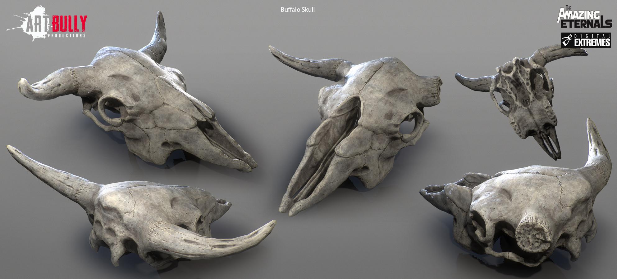 Buffalo_Skull_Render.jpg