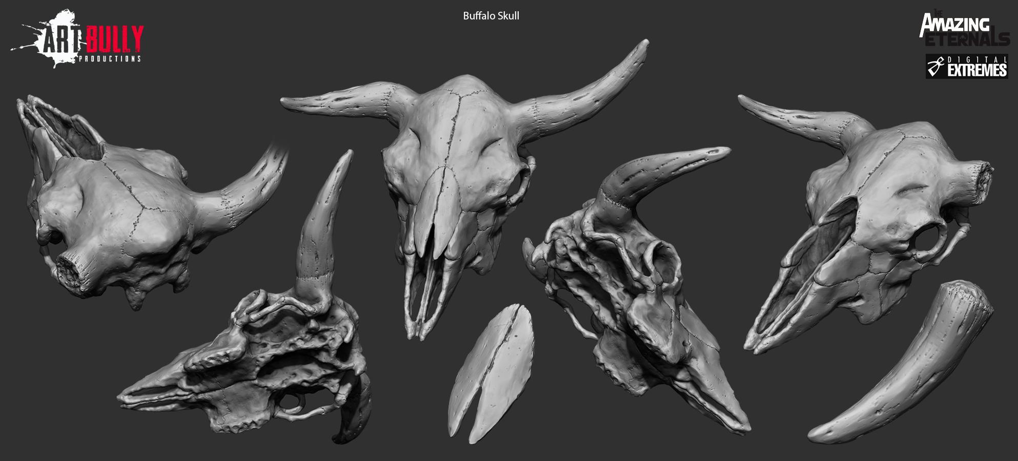 Buffalo_Skull_HP_Render.jpg