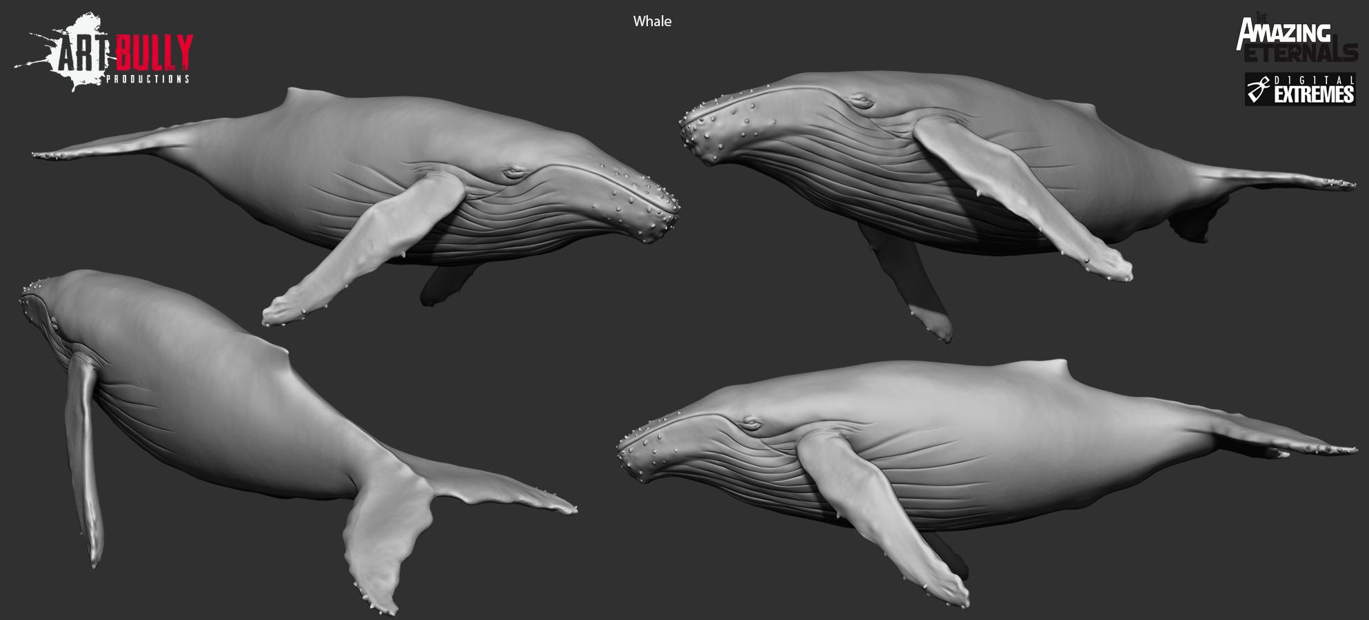 Whale_HP_Render.jpg