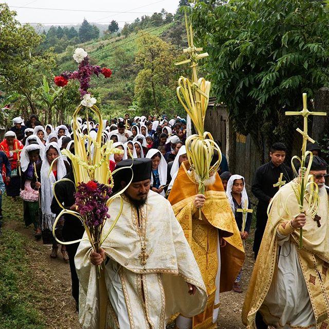 Palm Sunday in Guatemala. Hosanna in the highest!