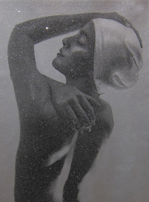 Shower Profile, 2012, Silkscreen on Canvas with Diamond Dust, 40 x 29 inches