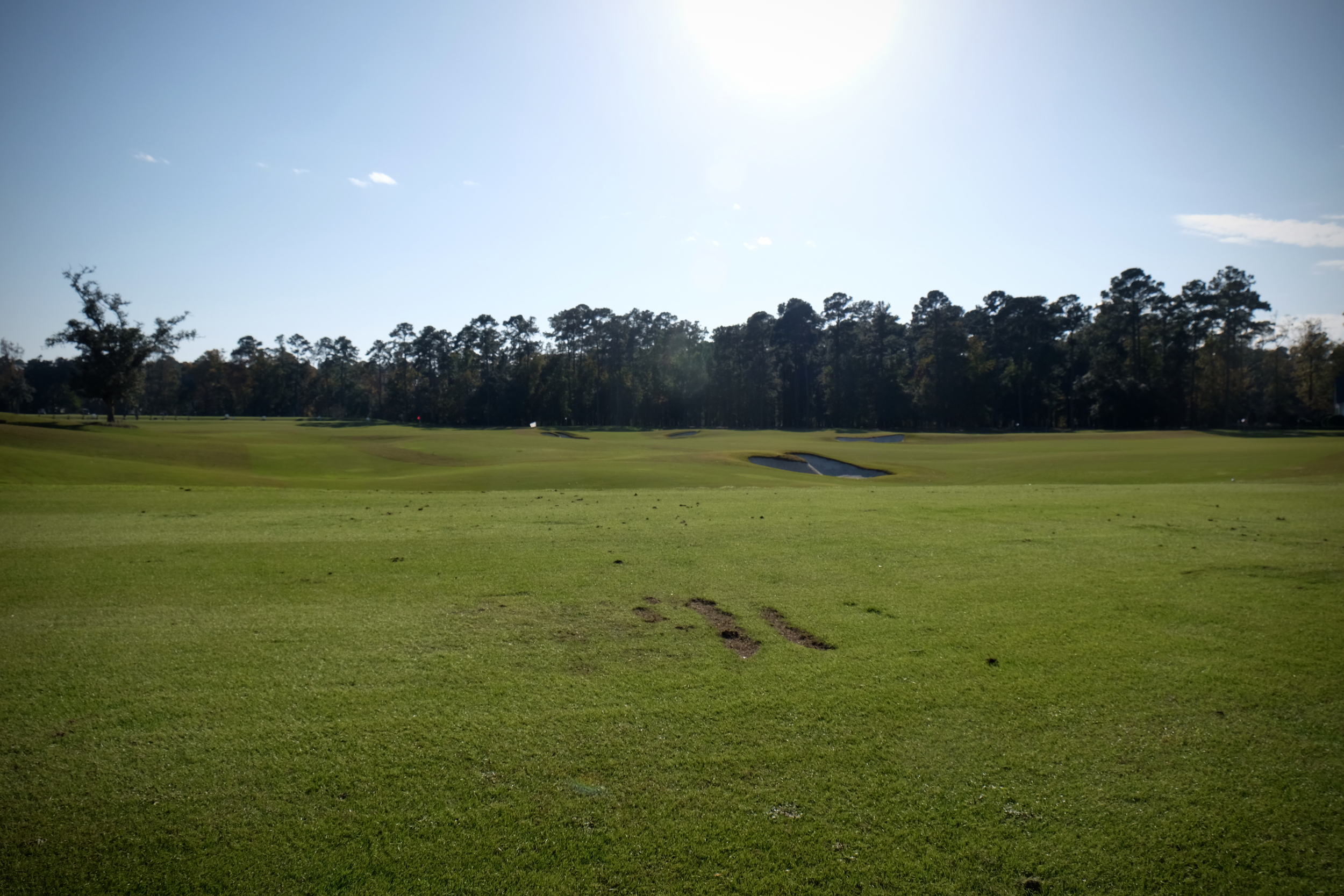 The Lesson Tee at Berkeley Hall