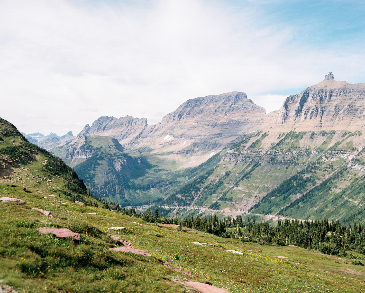 glacier-np-film (12 of 26).jpg