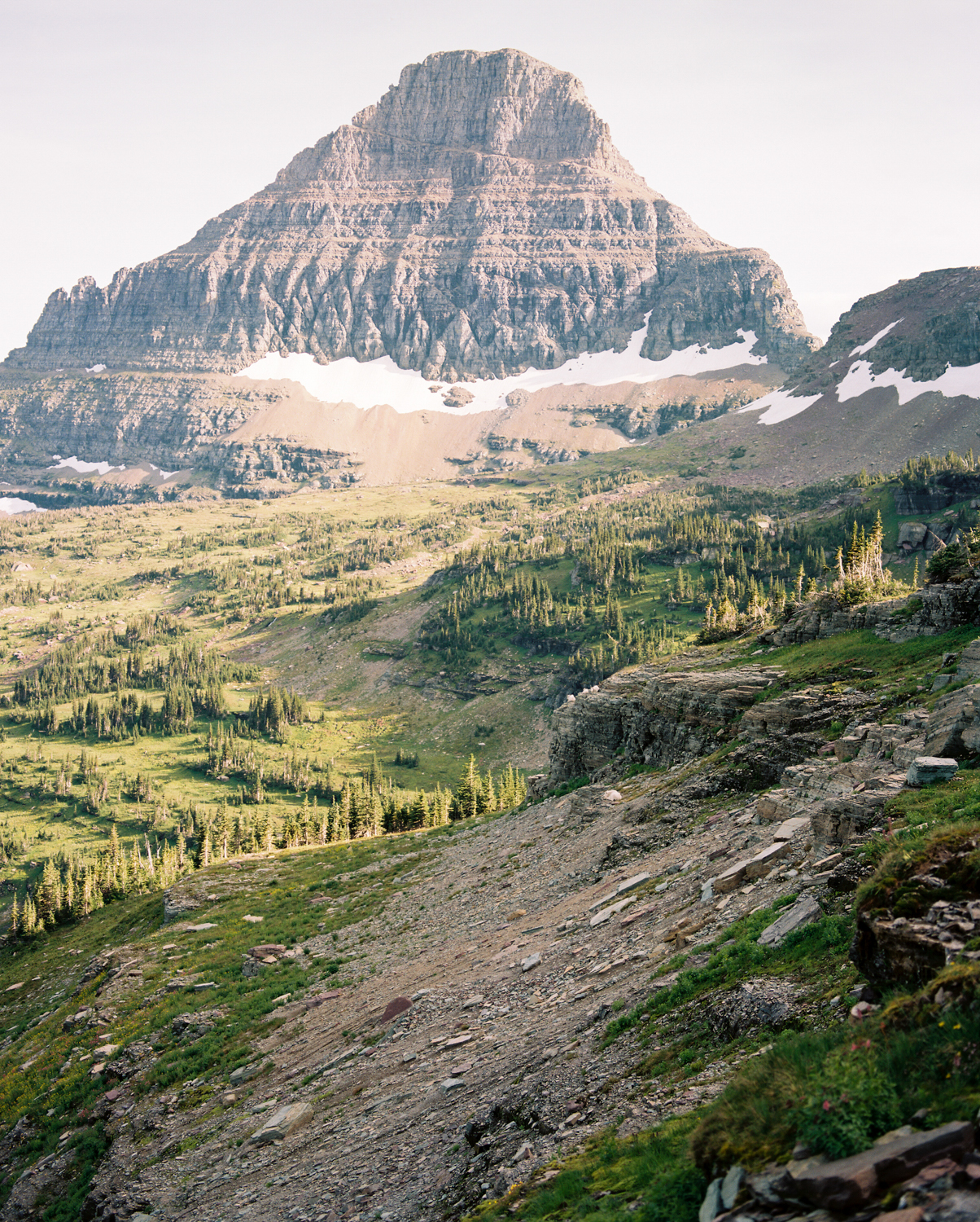 glacier-np-film (22 of 26).jpg