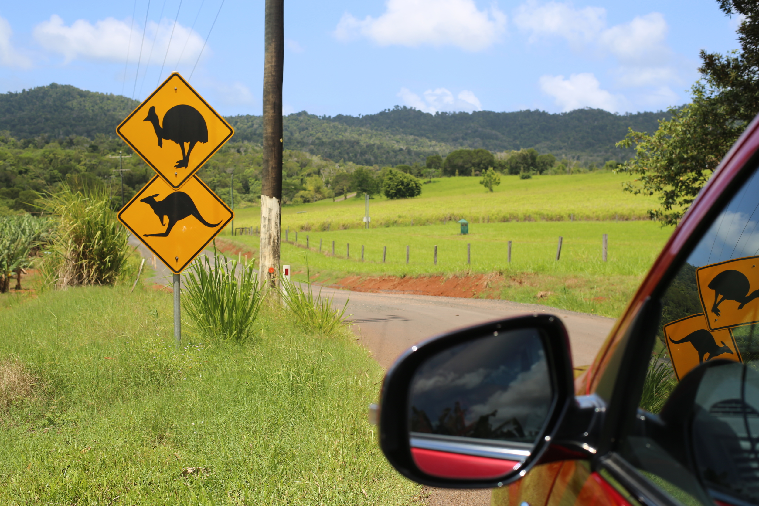Driving through Cairns