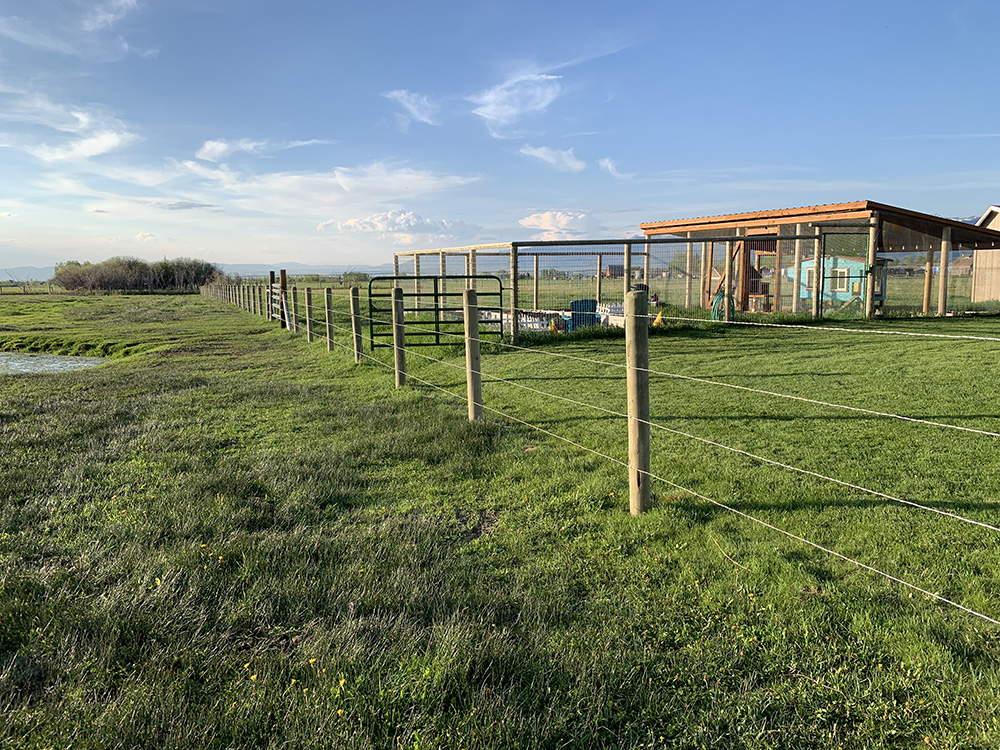 Horse fence with 4 strands of smooth wire