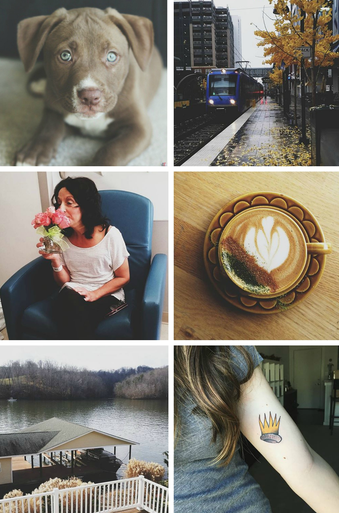 2015 in Review | Freckled Italian