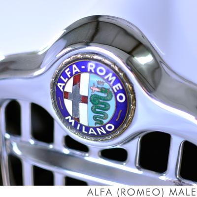 Alfa Romeo.jpg