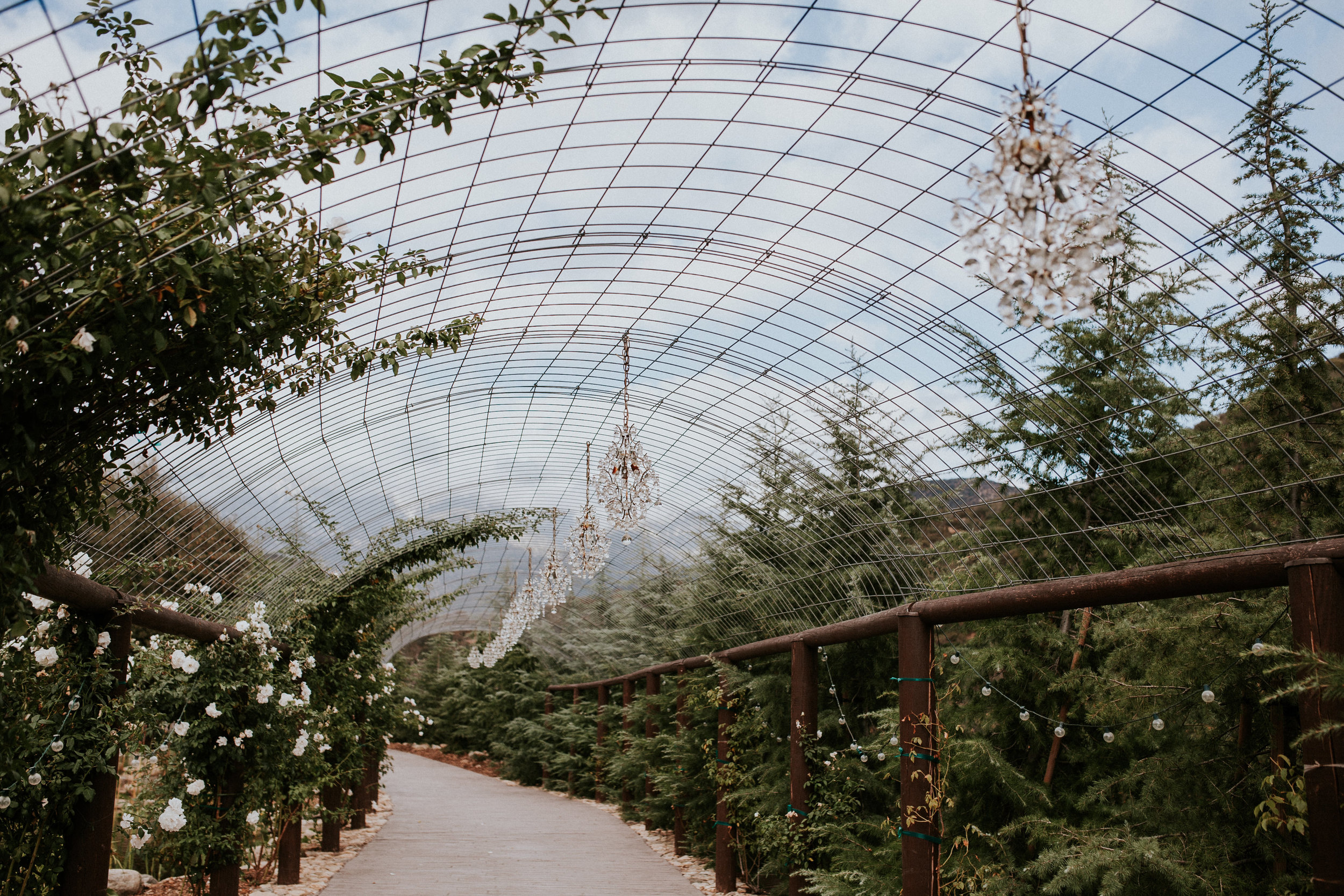 Chandelier Arch - Beautiful, chandelier arbor adjacent to our koi pond