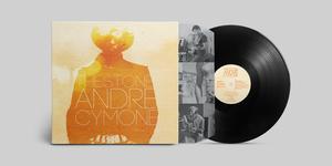 HDS-Vinyl-AC-front.jpg