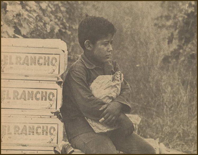 """From the cover of  El Macriado , """"The Voice of the Farmworker,"""" December 1968. El Macriado  was a newspaper published by the United Farm Workers (UFW) as part of their fight for farmworker rights."""