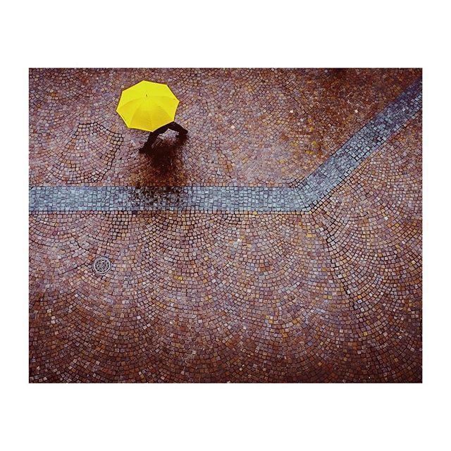 """Yellow On Red Cobblestones"" reworked Kaiserplatz, Frankfurt . . . . #street #streetphotography #streetphotos #ourstreets #capturestreets #life_is_street #urbanstreetphotogallery #everybodystreet #StreetsGrammer #streetizm #fujixpro1 #fujix #fuji #xpro1 fujixf35mm #frankfurt #dasechtefrankfurt #igersfrankfurt #ffm #frankfurtdubistsowunderbar #frankfurtammain #welovefrankfurt #frankfurtmain #frankfurtcity #frankfurter #frankfurtliebe #VSCO #vscofilter #vscocam"