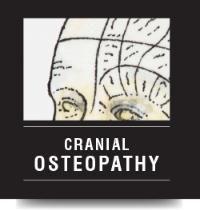 cranial.png