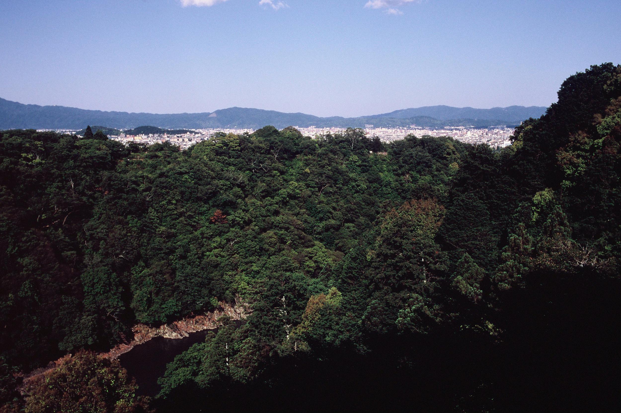 jp-24.jpg